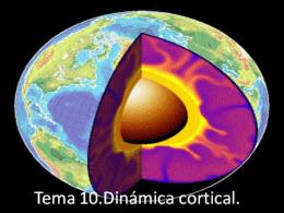 Dinámica cortical (presentación)