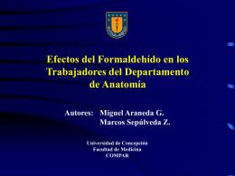 Sr. Miguel Araneda