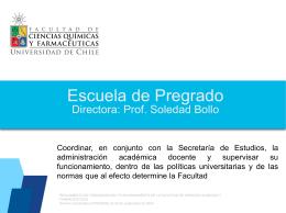 Primer_informe_Esc Pregrado_Nov_2014