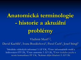Anatomická terminologie