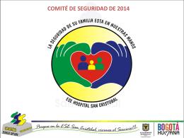 COMITE DE SEGURIDAD FEBRERO DE 2014