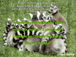 """Lemur catta"" residente no"