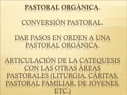 PASTORAL ORGÁNICA. Conversión pastoral. Dar pasos en orden a
