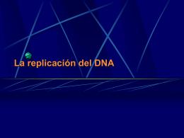 Flujo de la Información Genética II