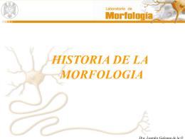 HISTORIA DE LA MORFOLOGIA Dra. Lourdes