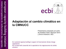 Adaptación al cambio climático en la CMNUCC
