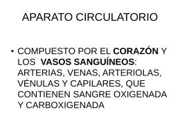 CAPAC SOFI APAR CV 4 MAY