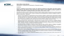 CV Pedro Suarez Barreto 01302012