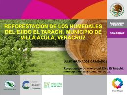 REFORESTACION DE LOS HUMEDALES (7,6