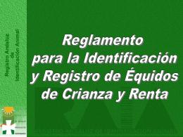 certificado oficial de identificación equina
