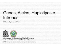 Diapositiva 1 - Universidad Autónoma de San Luis Potosí