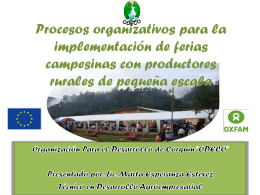 Manual sobre Implementacion de Feria PPT