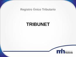 TRIBUNET MODIFICACION DE DATOS RUT 2014 NOILY