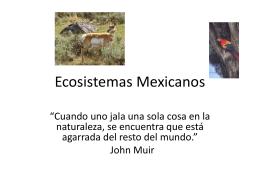Ecosistemas Mexicanos