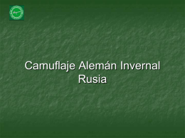 Camuflaje Invernal (159)