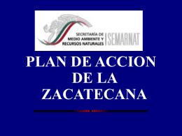 Plan de acción de la Zacatecana. SEMARNAT.