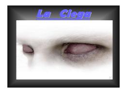 La Ciega - AIXEMGZ