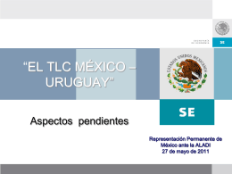 Presentación de la Ministro Representante Alterno de México ante
