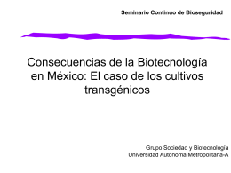 El caso de los cultivos transgénicos