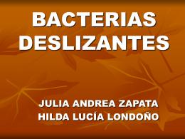 BACTERIAS DESLIZANTES