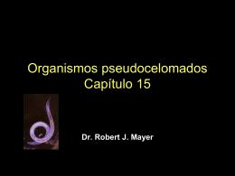 Organismos pseudocelomados Capítulo 15