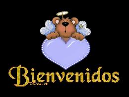 3comunica - San Luis Rey