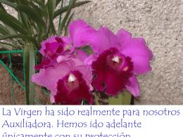Frases y pensamientos de Don Bosco sobre María Auxiliadora 1