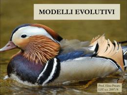 Speciazione e modelli evolutivi