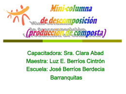 Mini Columna de Descomposicion