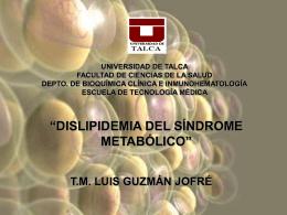Dislipidemia del Síndrome Metabólico - PIFRECV