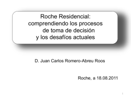Cómo funciona Roche: comprendiendo los procesos de toma de