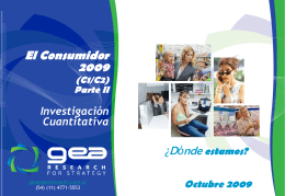 Consumidor 2009 - GEA Research For Strategy