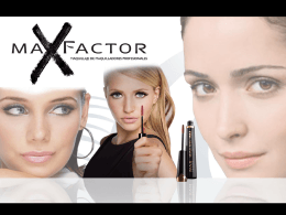 PLAN MAX FACTOR 07 antecedentes