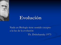 Evolución 1 - prof.usb.ve.