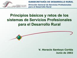 SUBSECRETARÍA DE DESARROLLO RURAL Dirección