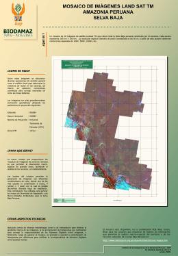 mosaico de imágenes land sat tm amazonia peruana selva baja