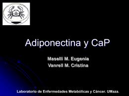 adiponectina_CaP