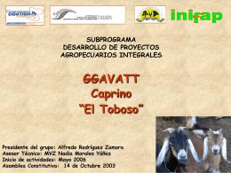 Toboso.2 - intranet fgp