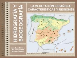 Diversidad biogeográfica Archivo