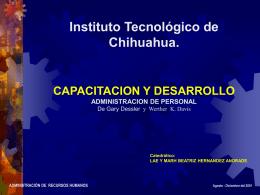 Capacitación y Desarrollo - ITCh DEPI