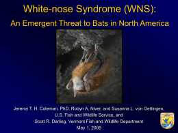 (WNS): An Emergent Threat to Bats in North - White