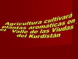 Agriculturá cultivará plantas en el Kurdistán.