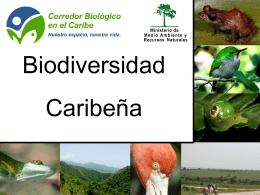 Presentación CBC-F - Corredor Biológico en el Caribe
