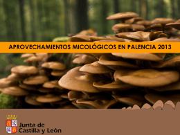 Presentación de los aprovechamientos micológicos en Palencia 2013