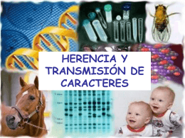 T2 HERENCIAYTRANSMISION DE CARACTERES