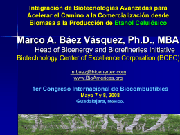 Marco A. Baez - Biotechnology Center of Excellence Corp Insumos