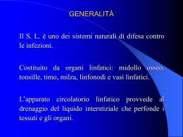 Linfanatomia