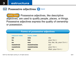 possessive adjectives ppt - Fort Thomas Independent Schools