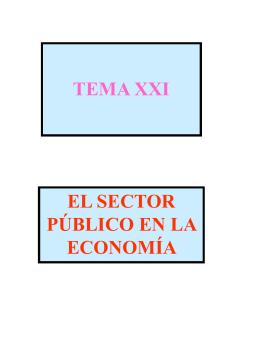 El Sector Público en la economía.