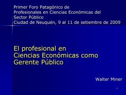 El profesional en Ciencias Económicas como Gerente Público